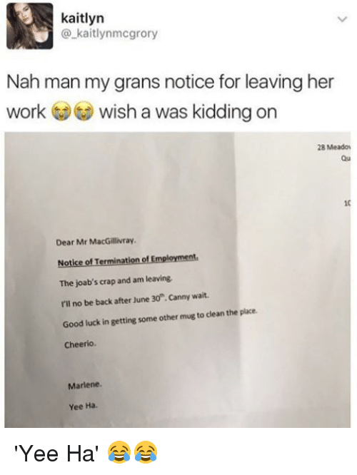 Memes, Yee, and Work: kaitlyn  kaitlynmcgrory  Nah man my grans notice for leaving her  work wish a was kidding on  28 Meadow  Dear Mr MacGillivray,  Notice of Termination of Employment  The joab's crap and am leaving  I'll no be back after June 30 .canny wait.  Good luck in getting some other mug to clean the place.  Cheerio.  Marlene.  Yee Ha. 'Yee Ha' 😂😂