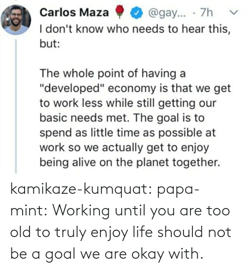 Okay: kamikaze-kumquat:  papa-mint:    Working until you are too old to truly enjoy life should not be a goal we are okay with.