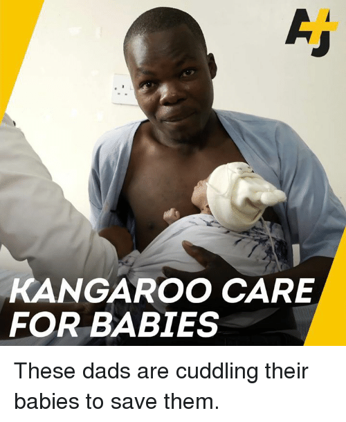 Memes, 🤖, and Kangaroo: KANGAROO CARE  FOR BABIES These dads are cuddling their babies to save them.