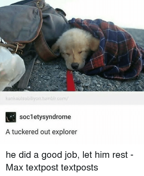 Memes, Good, and 🤖: kankaolsabiliyon.tumbir.com/  soc1etysyndrome  A tuckered out explorer he did a good job, let him rest - Max textpost textposts