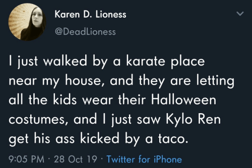 Costumes: Karen D. Lioness  @DeadLioness  I just walked by a karate place  near my house, and they are letting  all the kids wear their Halloween  costumes, and I just saw Kylo Ren  get his ass kicked by a ta co.  9:05 PM 28 Oct 19 Twitter for iPhone