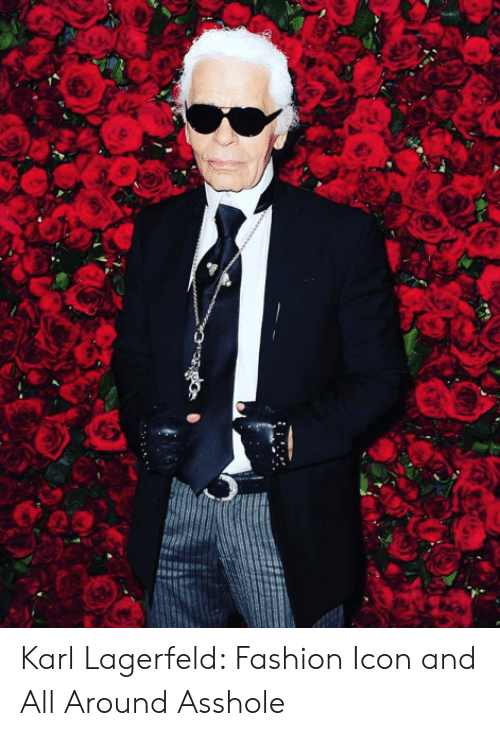 Fashion, Target, and Http: Karl Lagerfeld: Fashion Icon and All Around Asshole