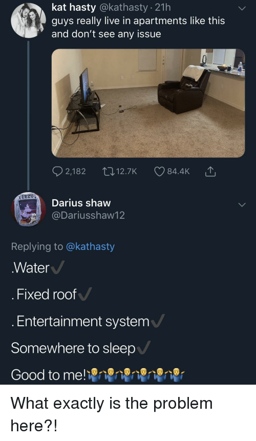 Good, Live, and Water: kat hasty @kathasty . 21h  guys really live in apartments like this  and don't see any issue  EEZU  Darius shaw  @Dariusshaw12  Replying to @kathasty  Water  . Fixed roof  Entertainment system  Somewhere to sleep  Good to me! What exactly is the problem here?!