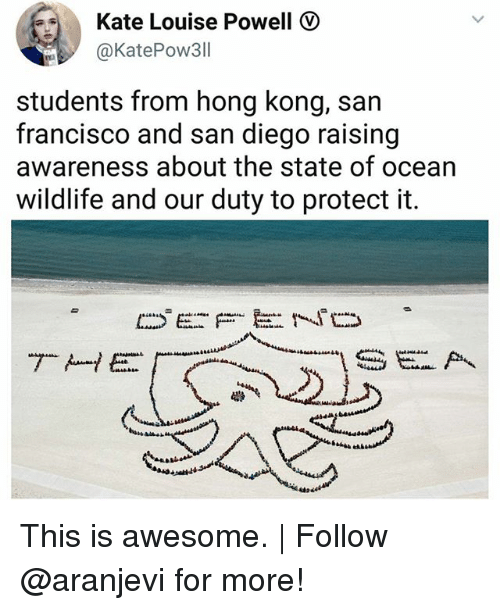 Memes, Hong Kong, and Ocean: Kate Louise Powell  @KatePow311  students from hong kong, san  francisco and san diego raising  awareness about the state of ocean  wildlife and our duty to protect it. This is awesome. | Follow @aranjevi for more!