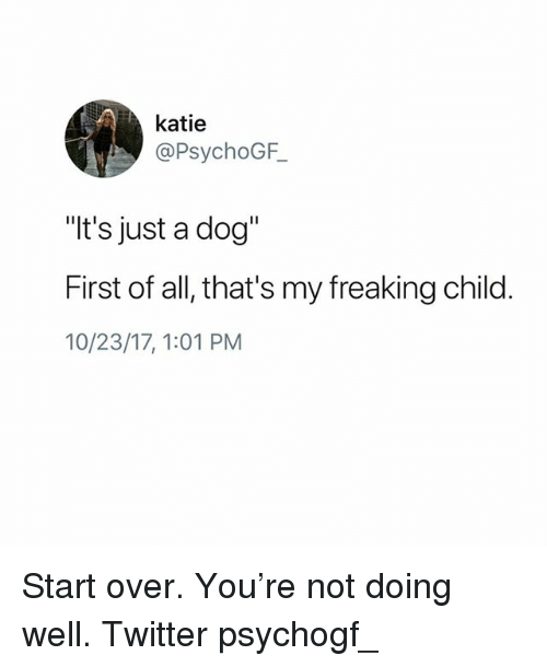 """Memes, Twitter, and 🤖: katie  @PsychoGF  """"t's just a dog""""  First of all, that's my freaking child.  10/23/17, 1:01 PM Start over. You're not doing well. Twitter psychogf_"""