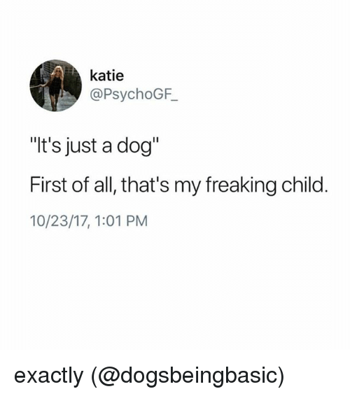"""Memes, 🤖, and Dog: katie  @PsychoGF  """"t's just a dog""""  First of all, that's my freaking child  10/23/17,1:01 PM exactly (@dogsbeingbasic)"""