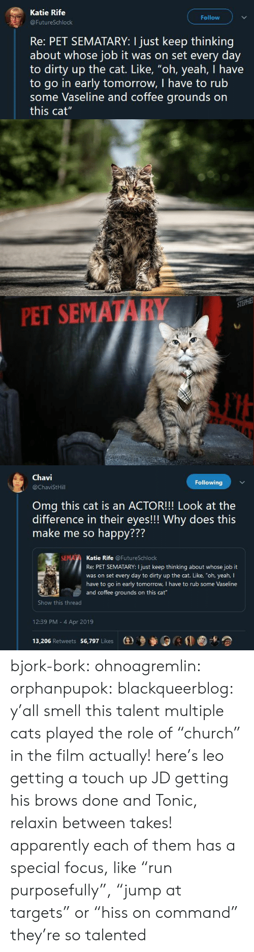 "Apparently, Cats, and Omg: Katie Rife  Follow  FutureSchlock  Re: PET SEMATARY: I just keep thinking  about whose job it was on set every day  to dirty up the cat. Like, ""oh, yeah, I have  to go in early tomorrow, I have to rub  some Vaseline and coffee grounds on  this cat""   PET SEMATARY   Chavi  @ChaviStHill  Following  Omg this cat is an ACTOR!!! Look at the  difference in their eyes!!! Why does this  make me so happy???  772  Katie Rife @FutureSchlock  Re: PET SEMATARY: I just keep thinking about whose job it  was on set every day to dirty up the cat. Like, ""oh, yeah, I  have to go in early tomorrow, I have to rub some Vaseline  and coffee grounds on this cat  Show this thread  12:39 PM - 4 Apr 2019  13,206 Retweets 56,797 Likes  (e)乡參0 bjork-bork:  ohnoagremlin:  orphanpupok:  blackqueerblog: y'all smell this talent  multiple cats played the role of ""church"" in the film actually! here's leo getting a touch up JD getting his brows done and Tonic, relaxin between takes!   apparently each of them has a special focus, like ""run purposefully"", ""jump at targets"" or ""hiss on command"" they're so talented"