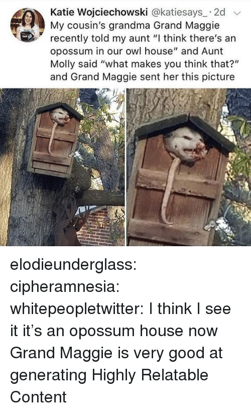 "Grandma, Molly, and Target: Katie Wojciechowski @katiesays 2d  My cousin's grandma Grand Maggie  recently told my aunt ""I think there's an  opossum in our owl house"" and Aunt  Molly said ""what makes you think that?""  and Grand Maggie sent her this picture elodieunderglass:  cipheramnesia:  whitepeopletwitter:  I think I see it  it's an opossum house now  Grand Maggie is very good at generating Highly Relatable Content"