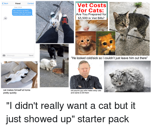 """Cats, Starter Packs, and Home: KBack  Friend  Contact  Vet Costs  for Cats:  Are You Prepared for  $3,500 in Vet Bills?  Today 5:50 AM  hey I found a cat that's  missing a leg, do you know  anyone that might want it?  no  拐1  iMessage  Send  """"He looked cold/sick so I couldn't just leave him out there""""  仃.  cat makes himself at home  pretty quickly  old psycho guy who hates stray cats  and wants to kill them"""