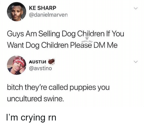 Bitch, Children, and Crying: KE SHARP  @danielmarven  Guys Am Selling Dog Children If You  Want Dog Children Please DM Me  AUSTIM  @avsting  bitch they're called puppies you  uncultured swine. I'm crying rn