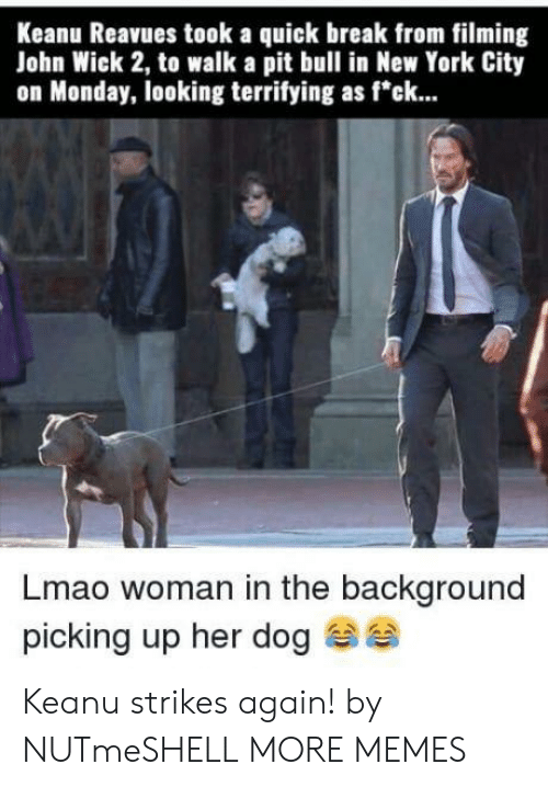 "York City: Keanu Reavues took a quick break from filming  John Wick 2, to walk a pit bull in New York City  on Monday, looking terrifying as f""ck...  Lmao woman in the background  picking up her dog Keanu strikes again! by NUTmeSHELL MORE MEMES"