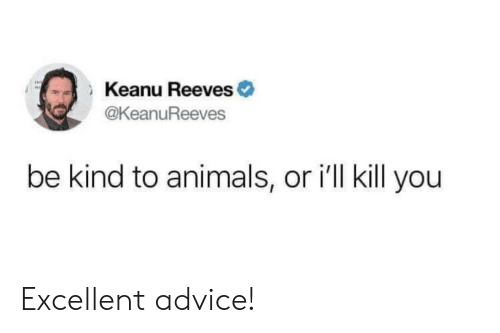 Advice, Animals, and Keanu Reeves: Keanu Reeves  THE  @KeanuReeves  be kind to animals, or i'll kill you Excellent advice!
