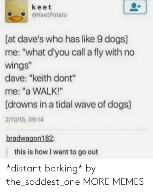 """Me What: keet  @KeetPotato  [at dave's who has like 9 dogs]  me: """"what d'you call a fly with no  wings""""  dave: """"keith dont""""  me: """"a WALK!""""  [drowns in a tidal wave of dogs]  2/10/15, 09:14  bradwagon182:  this is how I want to go out *distant barking* by the_saddest_one MORE MEMES"""