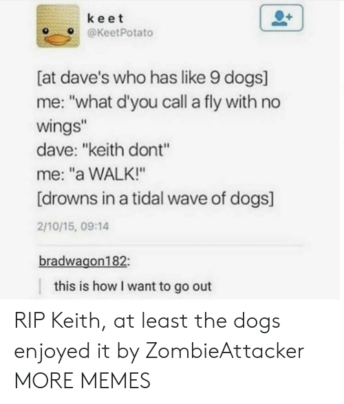 """Enjoyed It: keet  OKeetPotato  [at dave's who has like 9 dogs]  me: """"what d'you call a fly with no  wings  dave: """"keith dont""""  me: """"a WALK!""""  [drowns in a tidal wave of dogs]  2/10/15, 09:14  bradwagon182  this is how I want to go out RIP Keith, at least the dogs enjoyed it by ZombieAttacker MORE MEMES"""