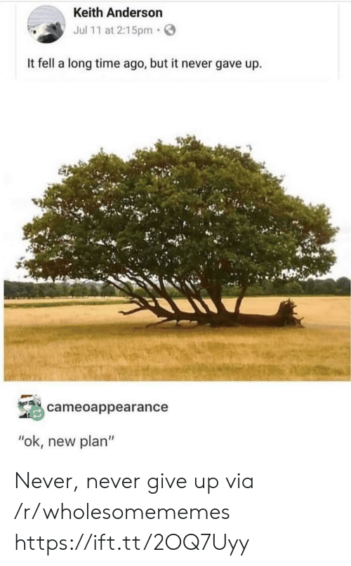 "Time, Never, and Via: Keith Anderson  Jul 11 at 2:15pm  It fell a long time ago, but it never gave up  cameoappearance  ""ok, new plan"" Never, never give up via /r/wholesomememes https://ift.tt/2OQ7Uyy"