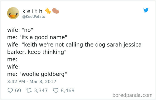 "Good, Wife, and Dog: keith  @KeetPotato  wife: ""no""  me: ""its a good name""  wife: ""keith we're not calling the dog sarah jessica  barker, keep thinking""  me:  wife:  me: ""woofie goldberg""  3:42 PM Mar 3, 2017  69 3,347  8,469  boredpanda.com"