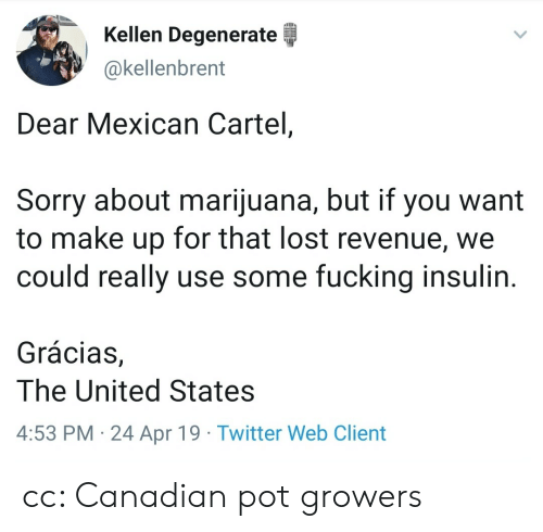 cartel: Kellen Degenerate  @kellenbrent  Dear Mexican Cartel,  Sorry about marijuana, but if you want  to make up for that lost revenue, we  could really use some fucking insulin  Grácias,  The United States  4:53 PM 24 Apr 19 Twitter Web Client cc: Canadian pot growers