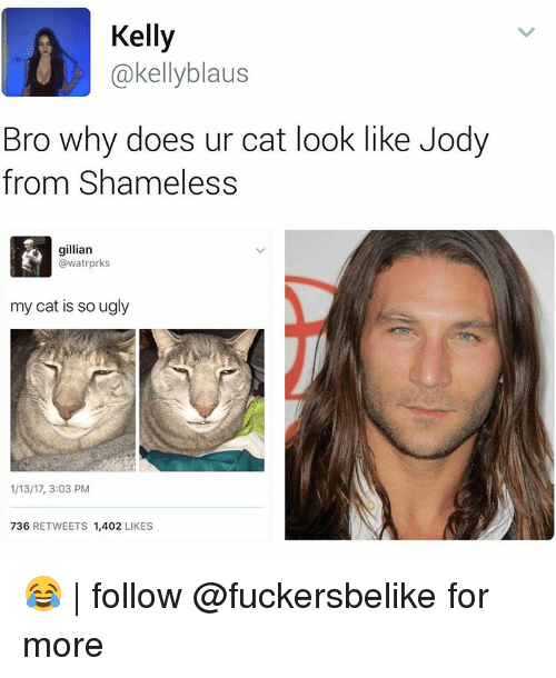 kelli: Kelly  @kelly blaus  Bro why does ur cat look like Jody  from Shameless  gillian  @watrprks  my cat is so ugly  1/13/17, 3:03 PM  736  RETWEETS  1,402  LIKES 😂 | follow @fuckersbelike for more