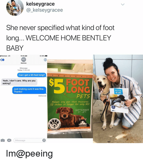 Memes, Verizon, and Yeah: kelseygrace  @_kelseygracee  She never specified what kind of foot  long... WELCOME HOME BENTLEY  BABY  l Verizon LTE  11:11 AM  MJ  Mamma  * 91%-  iMessage  Today 11:09 AM  Can I get a $5 foot long? d  Yeah, i don't care. Why are you  asking?  SE FOOT  LONG  PETS  Just making sure it was fine.  Thanks!  WELOME  HoME  Deliverec  Adopt any pet that measures  12 inches or longer for only $5!  SEPTEMBER  75T 8TH  Animal  iMessage Im@peeing