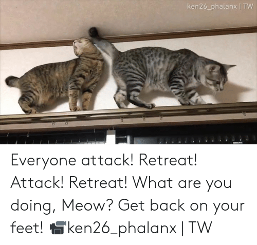 Dank, Back, and 🤖: ken26_phalanx | TW Everyone attack! Retreat! Attack! Retreat! What are you doing, Meow? Get back on your feet!  📹ken26_phalanx | TW