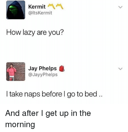Jay, Lazy, and Girl Memes: Kermit A1  @ltsKermit  How lazy are you?  Jay Phelps  @JayyPhelps  I take naps before l go to bed. And after I get up in the morning