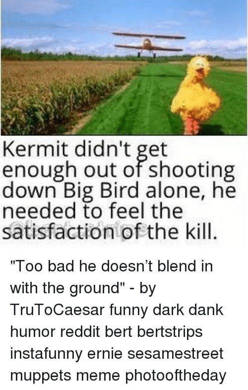"Big Bird: Kermit didn't get  enough out of shooting  down Big Bird alone, he  needed to feel the  satisfaction of the kill. ""Too bad he doesn't blend in with the ground"" - by TruToCaesar funny dark dank humor reddit bert bertstrips instafunny ernie sesamestreet muppets meme photooftheday"