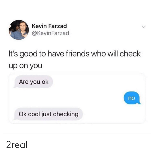 Friends, Cool, and Good: Kevin Farzad  @KevinFarzad  It's good to have friends who will check  up on you  Are you ok  no  Ok cool just checking 2real