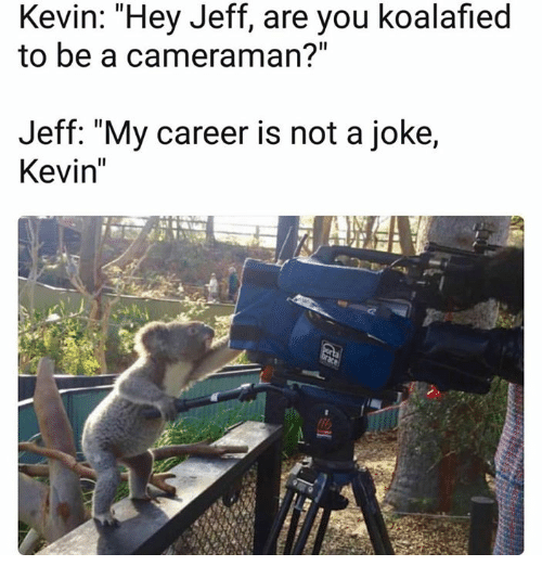 "My Career, Aed, and You: Kevin: Hey Jeff, are you koalafied  to be a cameraman?""  Jeff: ""My career is not a joke,  Kevin"""