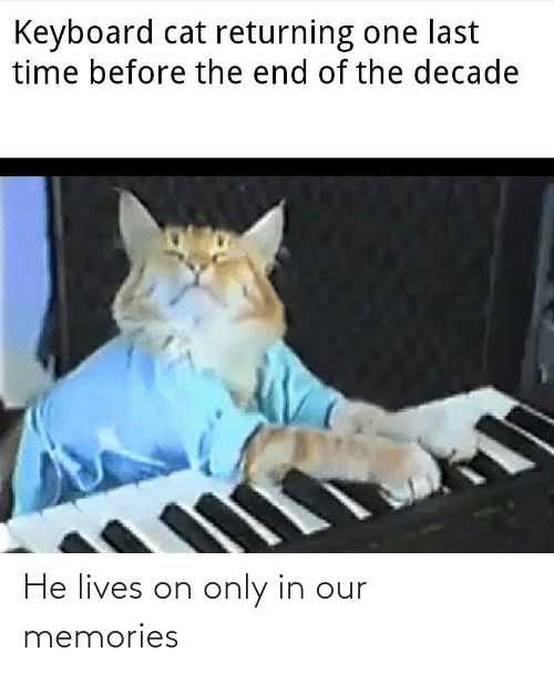 Keyboard: Keyboard cat returning one last  time before the end of the decade He lives on only in our memories