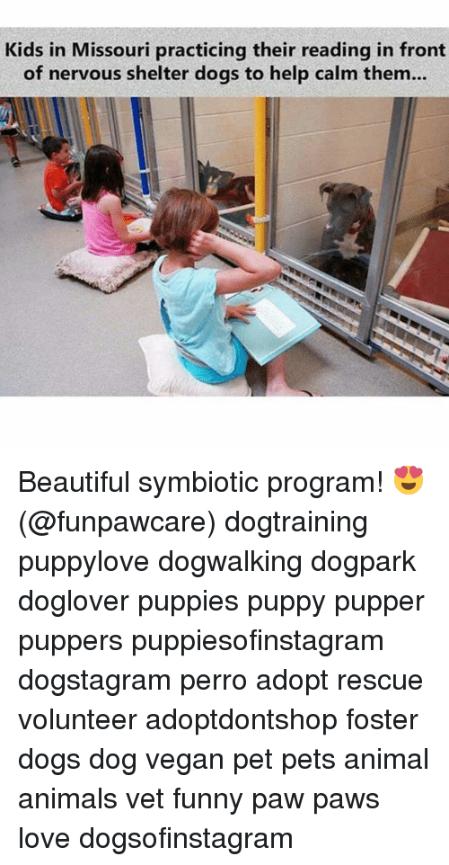Animals, Beautiful, and Dogs: Kids in Missouri practicing their reading in front  of nervous shelter dogs to help calm them... Beautiful symbiotic program! 😍 (@funpawcare) dogtraining puppylove dogwalking dogpark doglover puppies puppy pupper puppers puppiesofinstagram dogstagram perro adopt rescue volunteer adoptdontshop foster dogs dog vegan pet pets animal animals vet funny paw paws love dogsofinstagram
