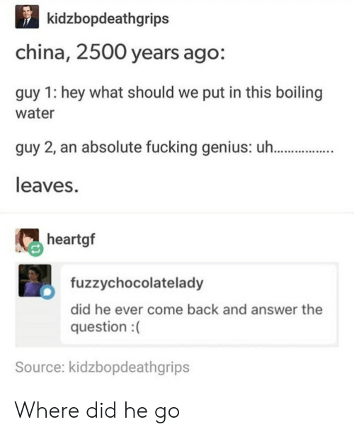 Fucking, China, and Genius: kidzbopdeathgrips  china, 2500 years ago:  guy 1: hey what should we put in this boiling  water  guy 2, an absolute fucking genius: u h.  leaves.  heartgf  fuzzychocolatelady  did he ever come back and answer the  question :(  Source: kidzbopdeathgrips Where did he go