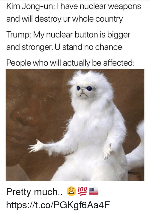 Nuclear Weapons: Kim Jong-un: I have nuclear weapons  and will destroy ur whole country  Trump: My nuclear button is bigger  and stronger. U stand no chance  People who will actually be affected Pretty much.. 😩💯🇺🇸 https://t.co/PGKgf6Aa4F