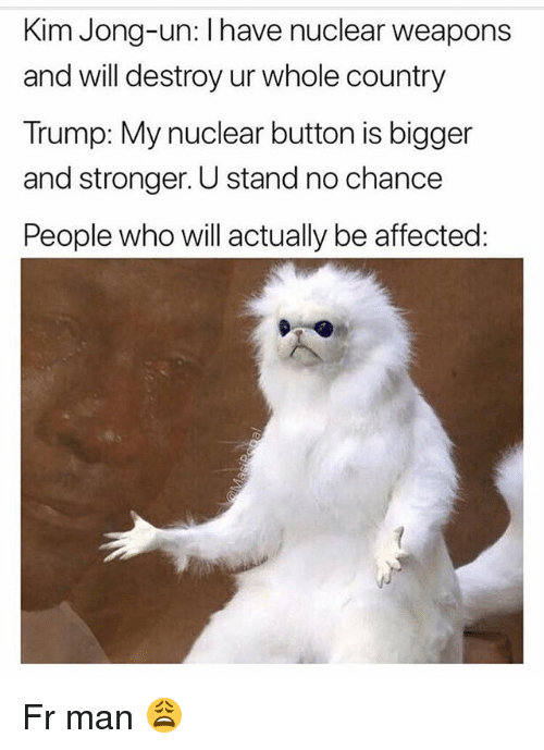 Nuclear Weapons: Kim Jong-un: I have nuclear weapons  and will destroy ur whole country  Trump: My nuclear button is bigger  and stronger. U stand no chance  People who will actually be affected Fr man 😩