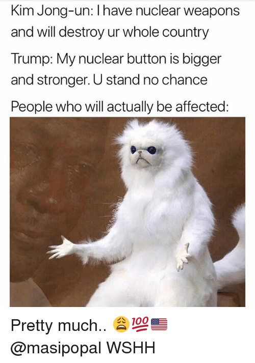 Nuclear Weapons: Kim Jong-un: l have nuclear weapons  and will destroy ur whole country  Trump: My nuclear button is bigger  and stronger. U stand no chance  People who will actually be affected Pretty much.. 😩💯🇺🇸 @masipopal WSHH