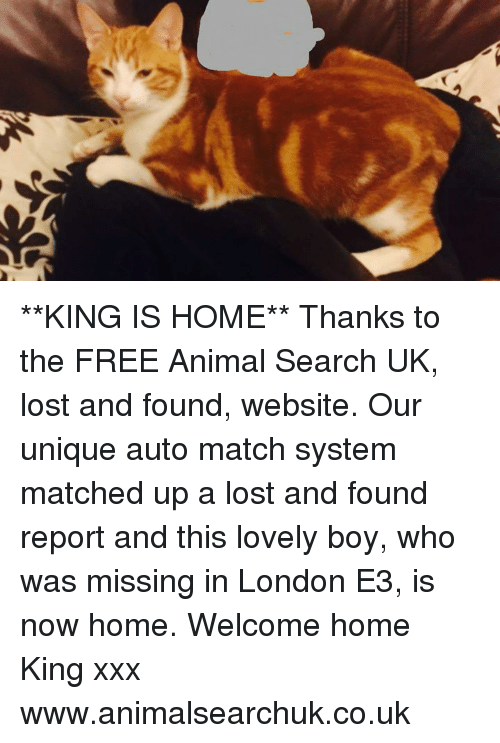 Memes, Xxx, and Lost: **KING IS HOME** Thanks to the FREE Animal Search UK, lost and found, website. Our unique auto match system matched up a lost and found report and this lovely boy, who was missing in London E3, is now home. Welcome home King xxx www.animalsearchuk.co.uk
