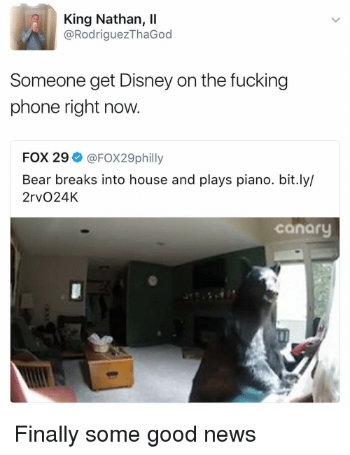 Disney, Fucking, and News: King Nathan, ll  @RodriguezThaGod  Someone get Disney on the fucking  phone right now.  FOX 29 @FOX29philly  Bear breaks into house and plays piano. bit.ly/  2rvO24K  canary Finally some good news