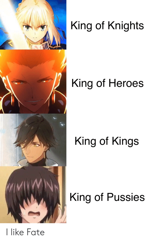 Anime, Heroes, and Fate: King of Knights  King of Heroes  King of Kings  MMVWN  King of Pussies I like Fate