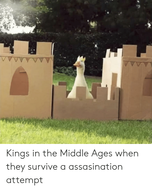 History, The Middle, and Kings: Kings in the Middle Ages when they survive a assasination attempt