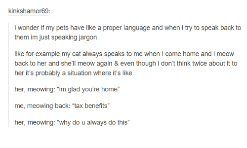 "Cats, Dank, and Taxes: kinkshalmer69:  i wonder if my pets have like a proper language and when i try to speak back to  them im just speaking jargon  like for example my cat always speaks to me when l come home and i meow  back to her and she'll meow again & even though i don't think twice about it to  her it's probably a situation where it's like  her, meowing: ""im glad you're home""  me, meowing back: ""tax benefits""  her, meowing: ""why do u always do this"""