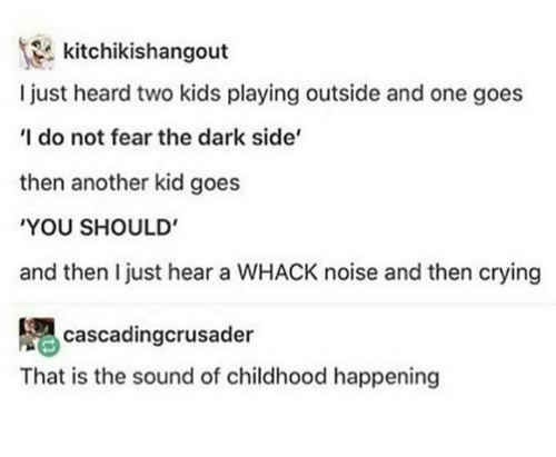 Crying, Memes, and Kids: kitchikishangout  I just heard two kids playing outside and one goes  I do not fear the dark side'  then another kid goes  YOU SHOULD'  and then I just hear a WHACK noise and then crying  cascadingcrusader  That is the sound of childhood happening