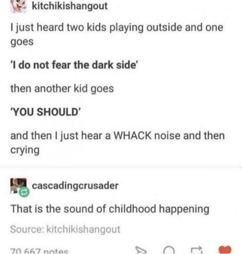 Crying, Kids, and Fear: kitchikishangout  I just heard two kids playing outside and one  goes  'I do not fear the dark side'  then another kid goes  'YOU SHOULD'  and then I just hear a WHACK noise and then  crying  cascadingcrusader  That is the sound of childhood happening  Source: kitchikishangout  70 667 notes  A