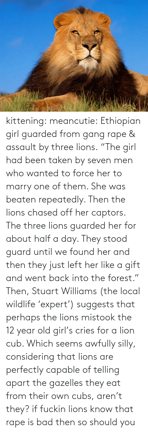 """Three Lions: kittening:  meancutie:   Ethiopian girl guarded from gang rape & assault by three lions. """"The girl had been taken by seven men who wanted to force her to marry one of them. She was beaten repeatedly. Then the lions chased off her captors. The three lions guarded her for about half a day. They stood guard until we found her and then they just left her like a gift and went back into the forest."""" Then, Stuart Williams (the local wildlife 'expert') suggests that perhaps the lions mistook the 12 year old girl's cries for a lion cub. Which seems awfully silly, considering that lions are perfectly capable of telling apart the gazelles they eat from their own cubs, aren't they?   if fuckin lions know that rape is bad then so should you"""