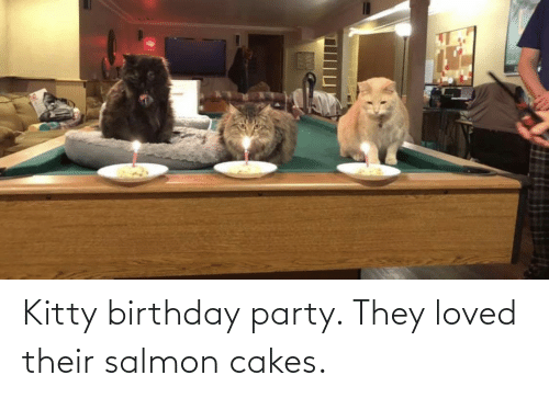Birthday, Party, and Salmon: Kitty birthday party. They loved their salmon cakes.