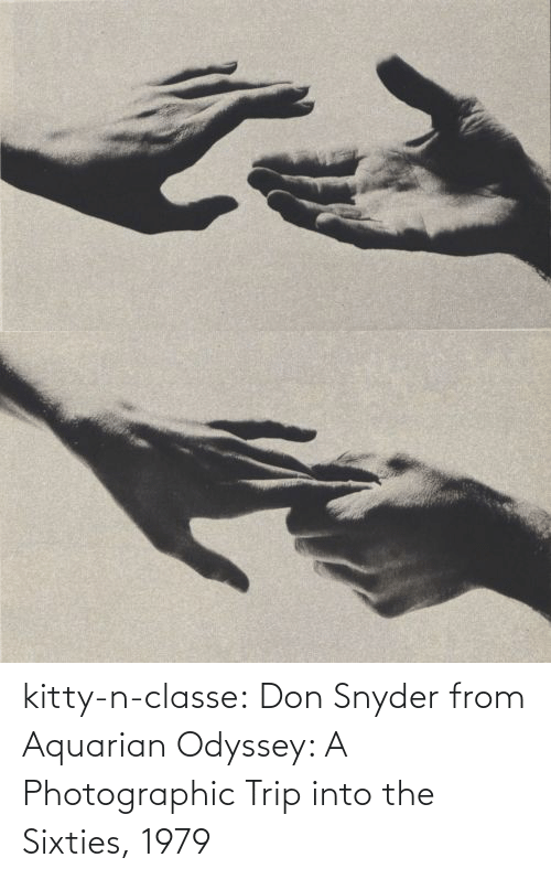 kitty: kitty-n-classe:    Don Snyder from Aquarian Odyssey: A Photographic Trip into the Sixties, 1979