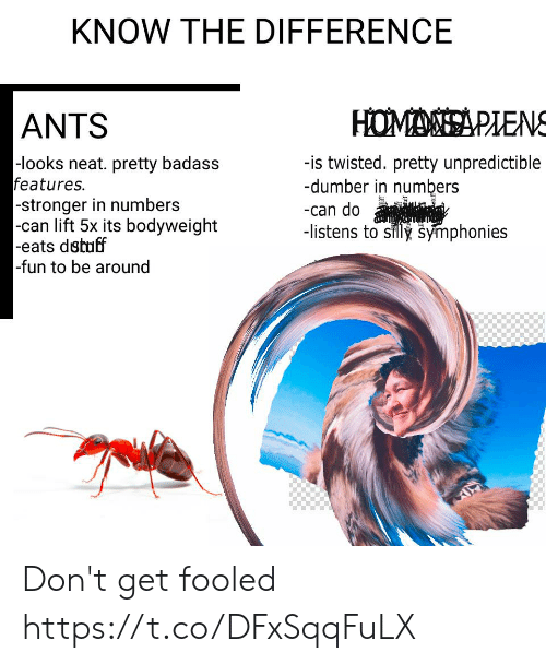 Badass, Ants, and Fun: KNOW THE DIFFERENCE  HOMASA PLENS  ANTS  -looks neat. pretty badass  features.  -stronger in numbers  |-can lift 5x its bodyweight  -eats dstuff  -fun to be around  -is twisted. pretty unpredictible  -dumber in numbers  -can do  -listens to silly symphonies Don't get fooled https://t.co/DFxSqqFuLX