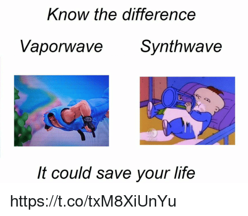 Life,  Know, and  Your Life: Know the difference  Vaporwave  Svnthwave  It could save your life https://t.co/txM8XiUnYu