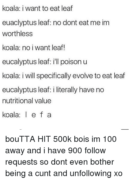 koala: koala: i want to eat leaf  euaclyptus leaf: no dont eat me im  worthless  koala: no i want leaf!  eucalyptus leaf: ill poison u  koala: i will specifically evolve to eat leaf  eucalyptus leaf: i literally have no  nutritional value  koala e f a bouTTA HIT 500k bois im 100 away and i have 900 follow requests so dont even bother being a cunt and unfollowing xo