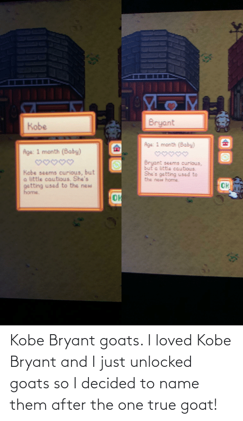 To Name: Kobe Bryant goats. I loved Kobe Bryant and I just unlocked goats so I decided to name them after the one true goat!