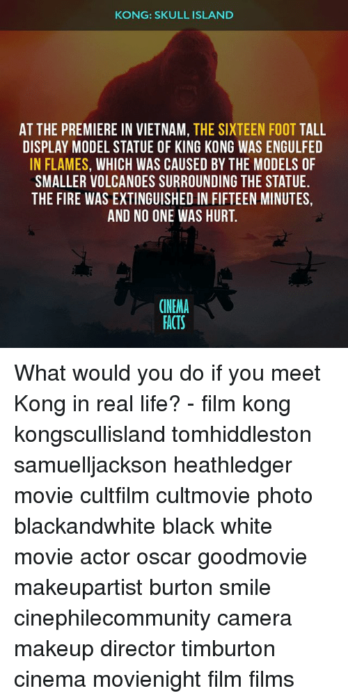 Facts, Fire, and Life: KONG: SKULL ISLAND  AT THE PREMIERE IN VIETNAM, THE SIXTEEN FOOT TALL  DISPLAY MODEL STATUE OF KING KONG WAS ENGULFED  IN FLAMES, WHICH WAS CAUSED BY THE MODELS OF  SMALLER VOLCANOES SURROUNDING THE STATUE  THE FIRE WAS EXTINGUISHED IN FIFTEEN MINUTES,  AND NO ONE WAS HURT.  CINEMA  FACTS What would you do if you meet Kong in real life? - film kong kongscullisland tomhiddleston samuelljackson heathledger movie cultfilm cultmovie photo blackandwhite black white movie actor oscar goodmovie makeupartist burton smile cinephilecommunity camera makeup director timburton cinema movienight film films