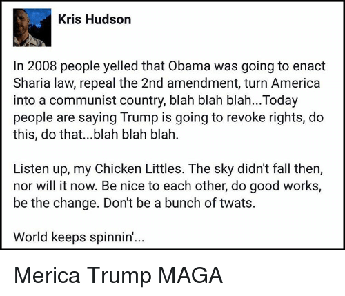 Memes, Communist, and Nice: Kris Hudson  In 2008 people yelled that Obama was going to enact  Sharia law, repeal the 2nd amendment, turn America  into a communist country, blah blah blah...Today  people are saying Trump is going to revoke rights, do  this, do that...blah blah blah.  Listen up, my Chicken Littles. The sky didn't fall then,  nor will it now. Be nice to each other, do good works,  be the change. Don't be a bunch of twats.  World keeps spinnin'... Merica Trump MAGA